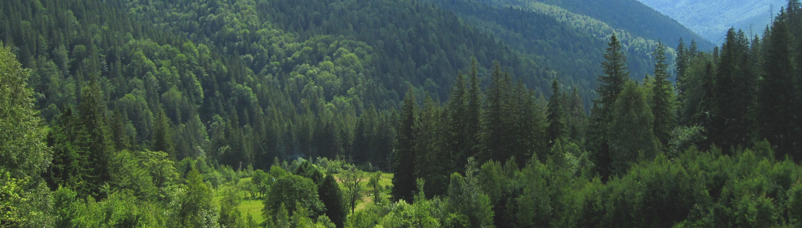 Green tourism in the Carpathians